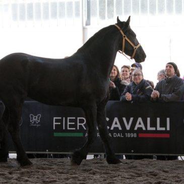Il mondo equestre riparte da Fieracavalli: ASI in prima fila tra sport e cultura.